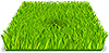 Commercial lawn